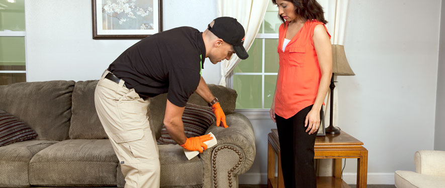 Frankfort, KY carpet upholstery cleaning