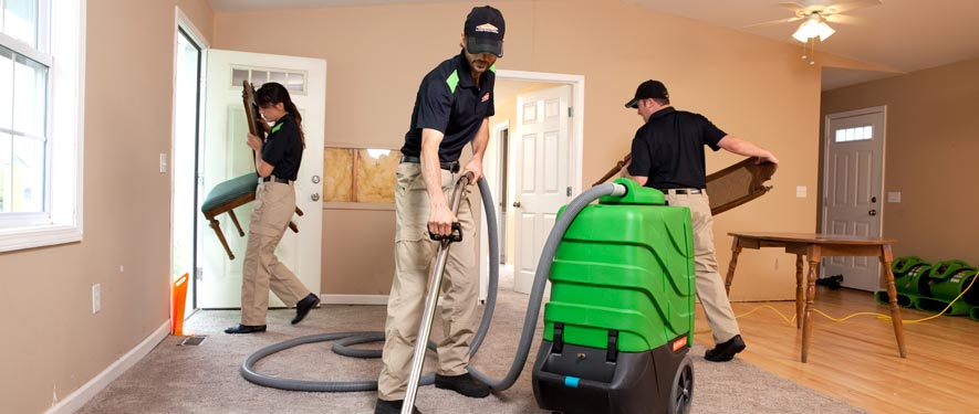 Frankfort, KY cleaning services
